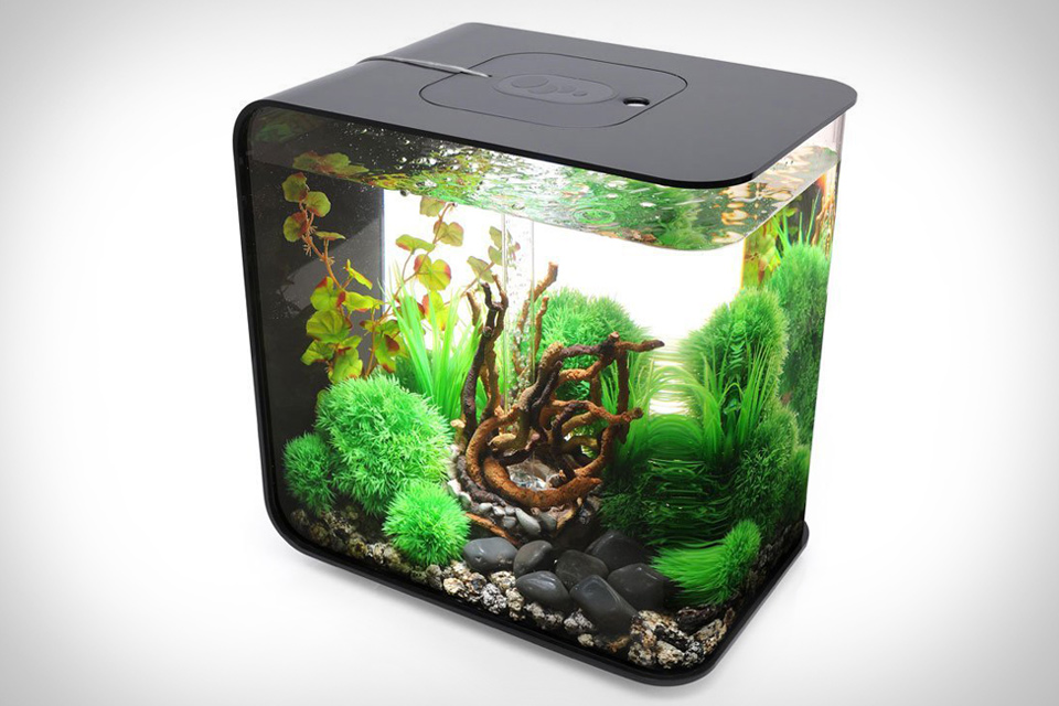 biorb-flow-aquarium-xl
