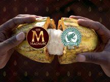 Anuncian uso de Cacao Sustentable en paletas Magnum by Juan Carlos Machorro