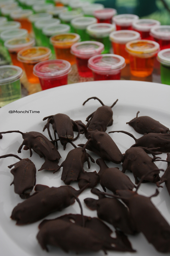 Wildfoods Festival Chocolate Beetles