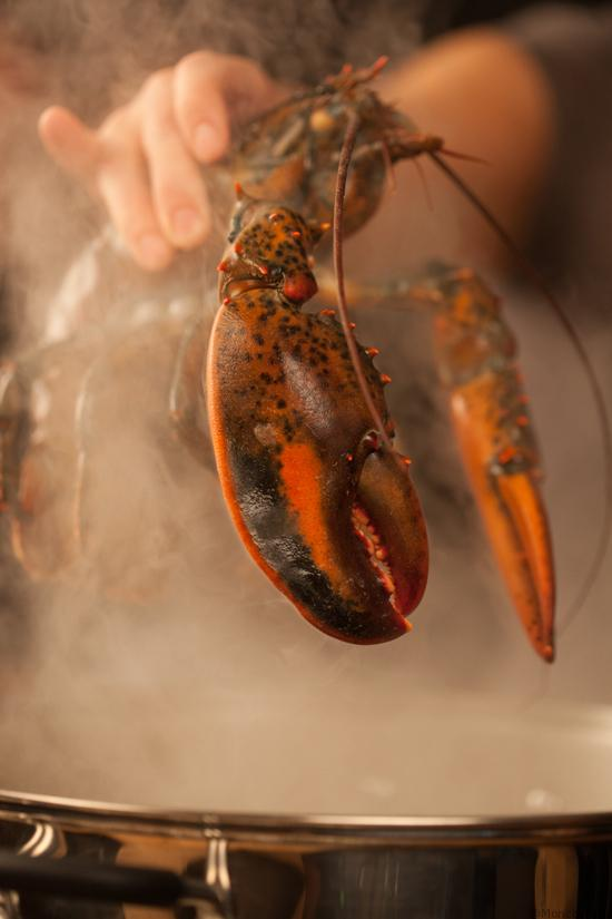 Close-up shot of lobster.(photo credit:  National Geographic Channels/Bobbi Lin)