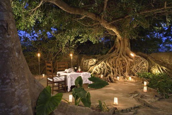 Las Haciendas -Romantic Dinner