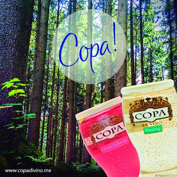 COPA-CAMP-2