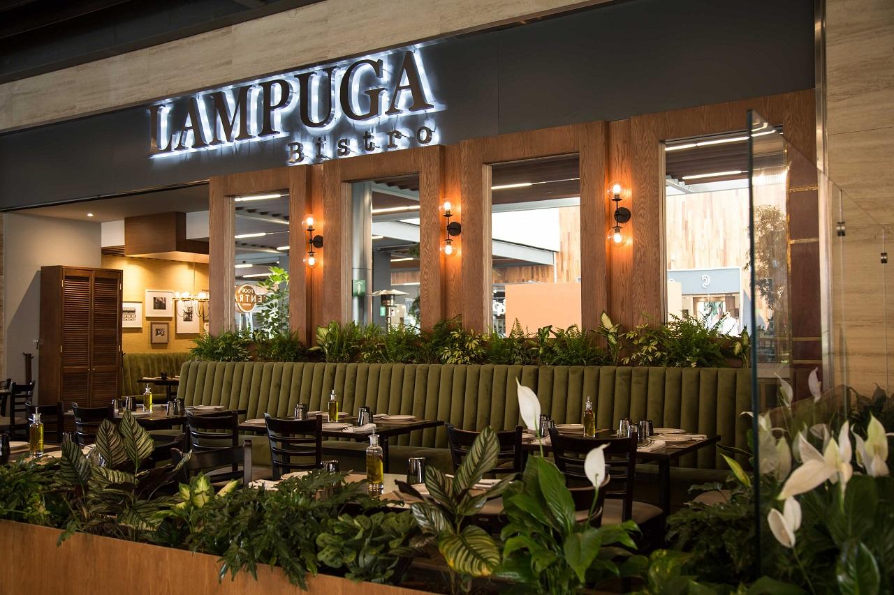 Lampuga Bistro abre sus puertas en Miyana Polanco - MonchiTime